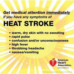 heat-strokejpg-59450d6f8007840a